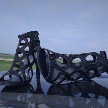 Čevlji na poti: Prekmurje